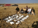Prairie Rose Outfitters Goose hunting